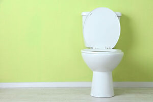 how to fix a toilet